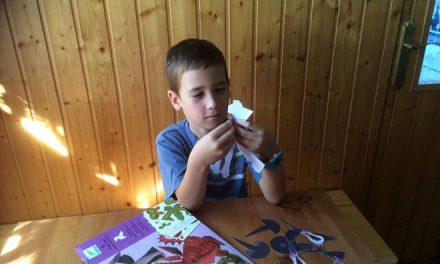 Test de juguetes: Dragones y magos